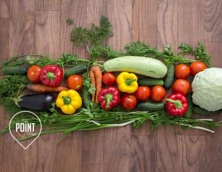 Beginners Vegetable Garden