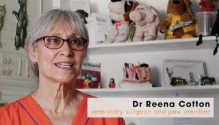 Dr Reena Cotton saves Khayelitsha Animal Clinic